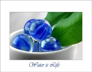 Water Pearls © Liz Collet