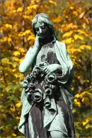 green, emotion, trennung, liebe, love, grab, weiss, white, blumen, flowers, death, tod, blumenkranz, grave, cemetery, churchyard, friedhof, rosen, roses, heart, herz, herzform, margeriten, bestattung, erbe, erben, kranz, wreath, grün, worte, words, sterben, beerdigung, abschied, grabstätte, totenruhe, floristik, grabpflege, kirchhof, beads, farewell, anteilnahme, funeral, grave care, anteil, separation, rosenkranz, dying, herzförmig, herzensangelegenheit, daisies, burial, pflicht, blumenhandel, erbschaft, trauerfloristik, abschiedsschmerz, erbteil, garland, heart shape, bestatten, erbrecht, herzliche anteilnahme, aussegnung, erbschaftsstreit, abschiedsgruss, blessing ceremony, the pain of parting, trauerflorist, totensorge, totensorgerecht, bestattungsrecht, erbschaftsangelegenheit, erbberechtigung