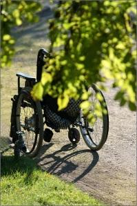 Rollstuhl © Liz Collet