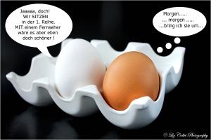Vorfreude ist die schönste für den Verteidiger © Liz Collet , Eier, Eierköpfe, braunes Ei, weisses Ei