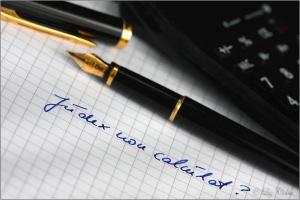Judex non calculat ? © Liz Collet