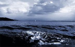 Tide  am Starnberger See  © Liz Collet