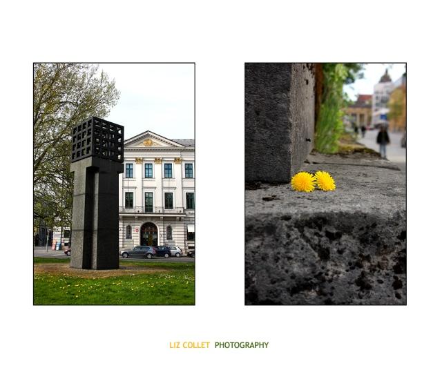Wider das Vergessen© Liz Collet