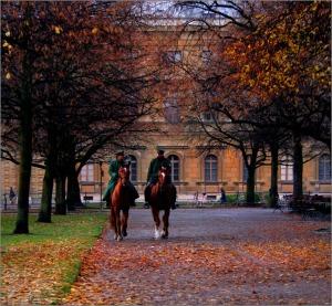 Kavallerie © Liz Collet