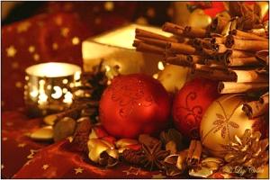 Frohe Weihnacht © Liz Collet