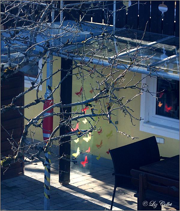 Sonnige Aussichten im Seniorenhaus© Liz Collet