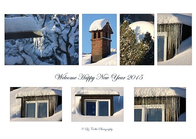 Neujahr 2015 © Liz Collet