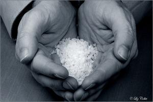 Salt of Life © Liz Collet