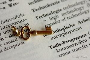 Schlüsseltechnologie, Wissenschaftskommunikation © Liz Collet